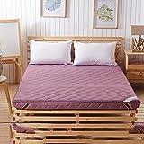 DHWJ Thickened Tatami Mattress,Student Dormitory mat,Single Double Folding mat-C 90x200cm(35x79inch)