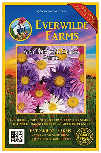 Everwilde Farms - 500 Single Mixed China Aster Wildflower Seeds - Gold Vault Jumbo Seed Packet