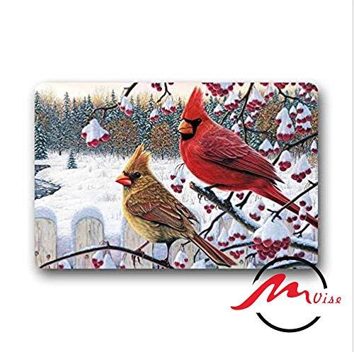 (ZMvise Red Cardinal Bird Art Cute Bird Non-Slip Bath Shower Area Rug Floor Door Mats Front Entry Carpet Indoor Doormat Outdoor Felt)