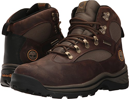 Mens Athletic Waterproof Boots - Timberland Men's Chocorua Trail Waterproof Hiking Boot,Brown w/Green,US 8.5 M