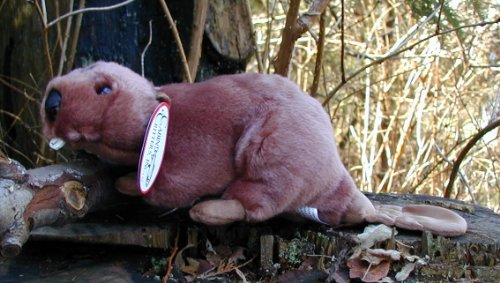 Cabin Critters Animal Beaver Stuffed Plush Replica Toy, 11-Inch (Stuffed Beaver Plush)