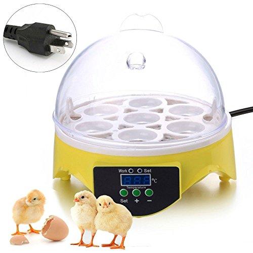 Automatic Digital Temperature Incubator Bird 7 Egg Incubator - 6