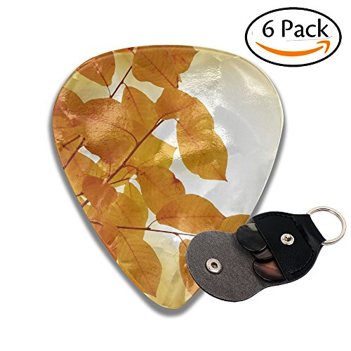 Autumn Background 351 Shape Classic Guitar Picks (6 Pack) For Electric Guitar, Acoustic Guitar, Mandolin, And Bass