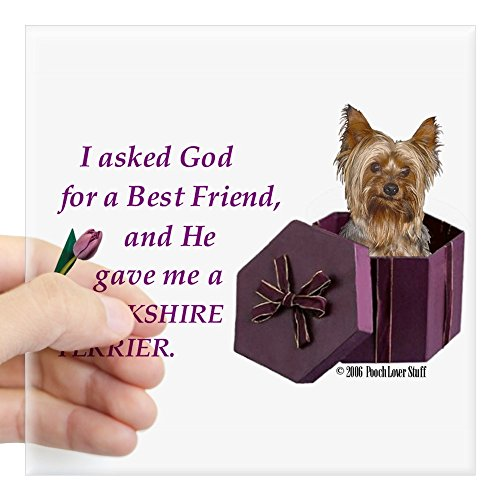 CafePress Yorkshire Terrier Yorkie Rectangle Sticker Square Bumper Sticker Car Decal, 3