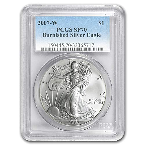 2006-W Burnished $1 American Silver Eagle 20th Annivesary OGP /& COA No Coins