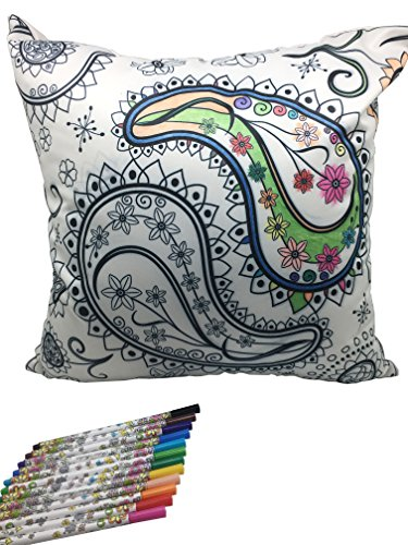 Flowers DIY Graffiti Decorative Coloring Square Pillowcase Fastness Pattern, 18 x 18 Inch(45cm x 45cm) with A Set of 12 Doodle Color Pens