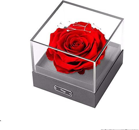 Hokaime Doce Constelaciones Caja de Regalo de Flor eterna Aniversario de San Valentín Regalo de cumpleaños de Navidad para niñas Amigas Esposa Novias, Virgo: Amazon.es: Hogar