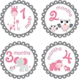 Little LillyBug Designs - Monthly Baby Stickers - Pink and Grey - Zoo Animals