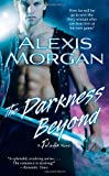 The Darkness Beyond (Paladins of Darkness, Book 8)