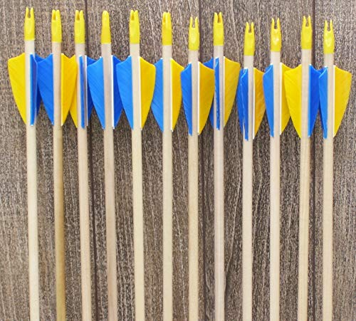 Youth Economy Wood Arrows yellow and blue (12)