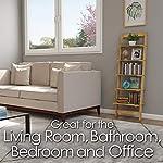 Home Décor 5-Tier Decorative Leaning Ladder Book Shelf, Blonde
