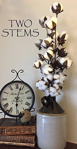 TWO (2) Cotton Stems Wired Floral Stalk Spray Branch Filler- 29