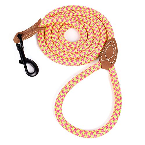 Mile High Life Leather Tailor Reinforce Handle Mountain Climbing Dog Rope Leash with Heavy Duty Metal Sturdy Clasp (Pink Lime Green, 4 FT)