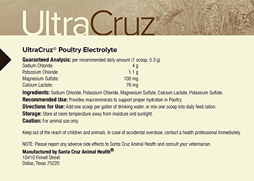 Amazon.com: ultracruz aves de corral electrolito, 1 lb ...