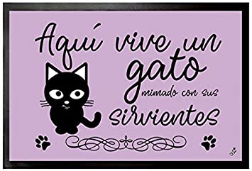 1art1® Gatos - Aquí Vive Un Gato Mimado con Sus Sirvientes Felpudo Alfombra (60 x 40cm): Amazon.es: Hogar