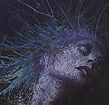 Fragile Hope by Devil Sold His Soul (2008-08-05)