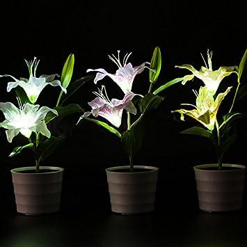 Lanlan Wasserdicht Pink Lily Blume LED Lampe Deko Topf Pflanze Lampe Solar  Power Garten Licht