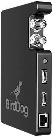 BirdDog Studio SDI/HDMI to Network Device Interface Converter (Standard)