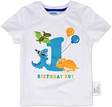 AMZTM Dinosaurio Camiseta de Cumpleaños - 1er Bebé Cumpleaños ...