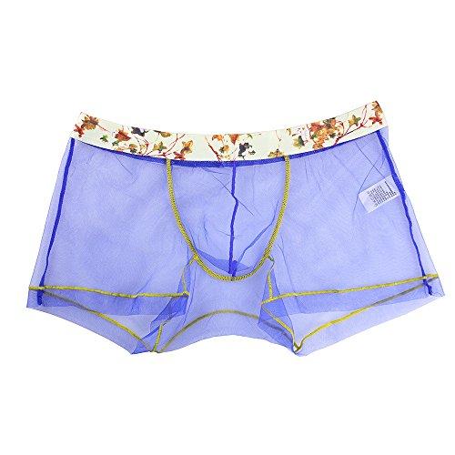 Designer Boxer Shorts (Clearance Sale! Men's Lingerie WEUIE Men Mesh Transparent Underwear Men Boxer Briefs Pouch Soft Underpants (XL, Blue))