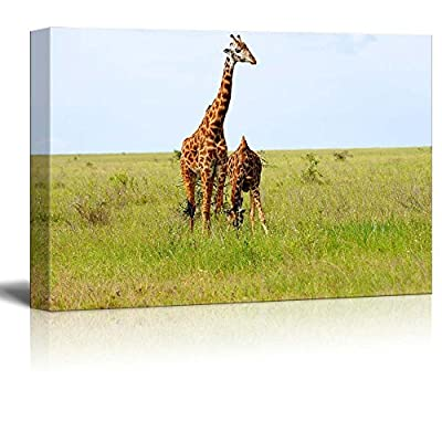 Canvas Prints Wall Art - 2 Graceful Giraffes in African Savannah | Modern Wall Decor/Home Art Stretched Gallery Wraps Giclee Print & Wood Framed. Ready to Hang - 24