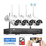 Best Night Vision For Home Securities - [Expandable 8CH] Wireless Security Camera System Outdoor,HisEEu 8 Review