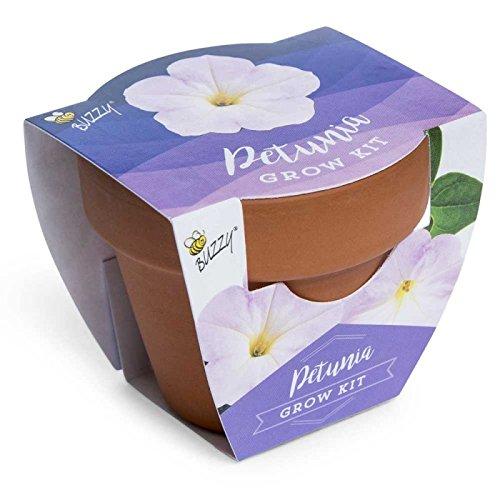 Baby Pot Plant - Spring Garden Mini Grow Pot Kit Plant Seeds Plant Outdoor & Indoor Petunia