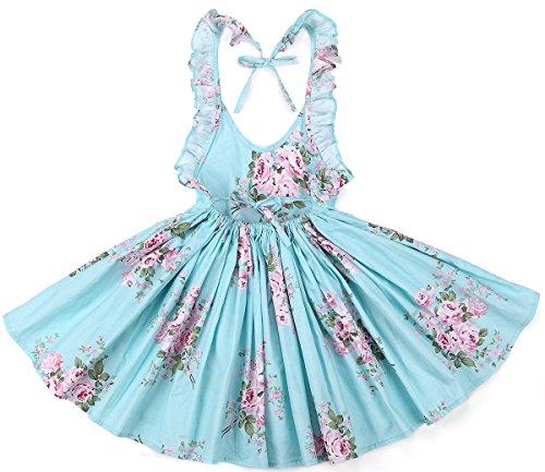 Flofallzique Vintage Floral Blue Girls Dress Baby Backless
