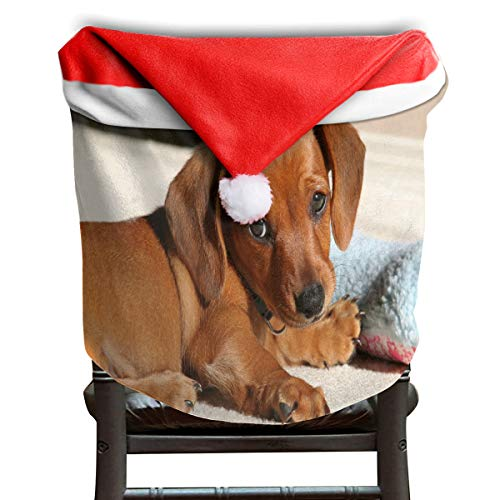 (OuLian Santa Hat Chair Covers Weiner Dog Attacking A Mirror Chairs Back Cover Slipcovers Kitchen Sets for Party)