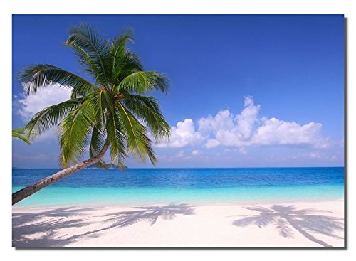 Picture Sensations Framed canvas Art Print, Palm Beach Torpical ocean White sand - 40
