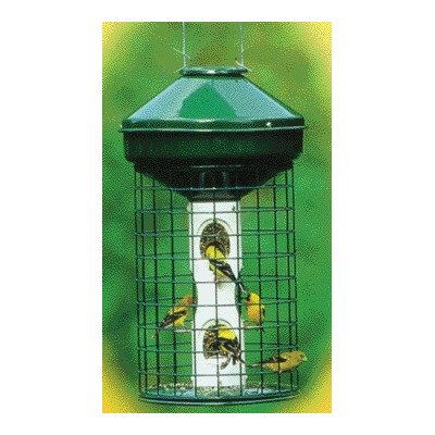 Avian Series Mixed Caged Bird Feeder - 0.25' Metal