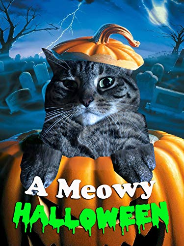 Halloween Movie Curtis (A Meowy Halloween)