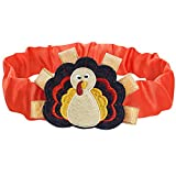 Blueberry Pet Thanksgiving Fall Fun Turkey Dog Collar Cover for Small, Medium, Large Collars, Holiday Decorative Accessory for Pet Collar