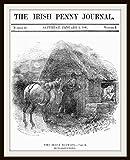 The Irish Penny Journal: Vol. 1 No. 27, January 2, 1841