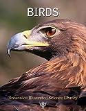 Birds, , 1615354654
