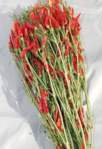 Amazon Com Dried Red Chili Peppers Bunch Red Green 15 18in Long