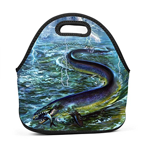 - Elcacf Unisex Bad Weather Huge Marine Life Lunch Bag-Small and convenient,creative and unique prints-picnic,travel,work,school,snacks.Thick Insulated Thermal