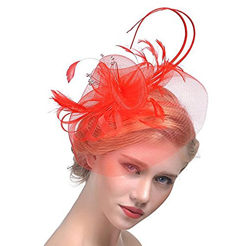 Hilary Ella Womens Feather Mesh Net Sinamay Fascinator Hat with Hair Clip Tea Party Derby]()