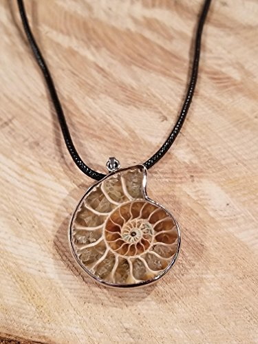 (Real Ammonite Fossil Pendant Leather Necklace Primitive Ocean Shell Jewelry Hippie Boho Handmade Sea Collection (N399))