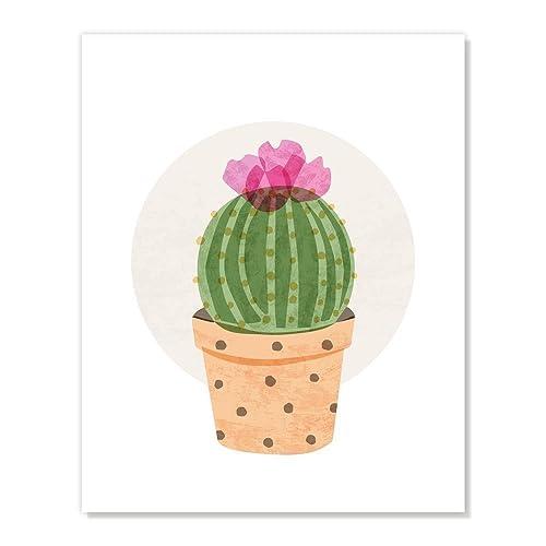 Amazon com: Succulent Plant Ball Cactus Flower Handcrafted Art Print