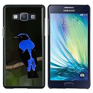 Azul Vibrante Ornitología plumas de aves- Metal de aluminio y de plástico duro Caja del teléfono - Negro - Samsung Galaxy A5 / SM-A500