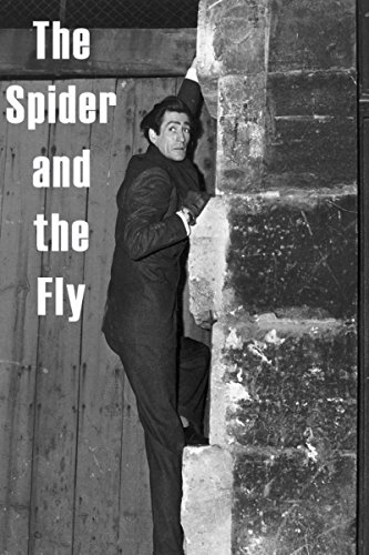 The Spider And The Fly -