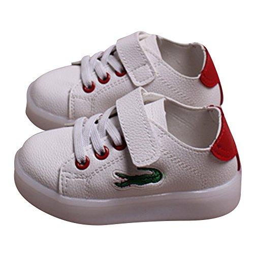 Highdas Niños Muchachos Muchachos LED Zapatos Colorido Luz Up Sneaker Trainers crocodile-rojo