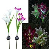 Do co-sport Lily Flower Solar Light, 2PCS Outdoor LED Garden Flowers for Night Lighting, Solar Path Walkway, Lawn, Garden, Pond, Patio, Gravestones, Special Occasions (White&Red Flower-White Light)
