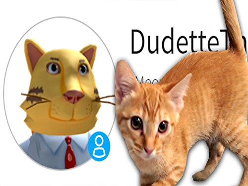Making Dudette The Cat Roblox Account!!
