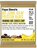 Papa Steve's No Junk Raw Protein Bars, Banana Oat Dark Chocolate, 2.2 Oz, 10 Count
