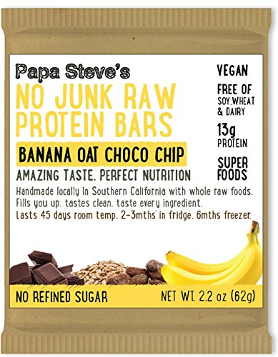 Bio Protein Bar - Papa Steves No Junk Raw Protein Bars, Dairy Free Banana Oat Choco Chip, 2.2 oz (10 Pack)