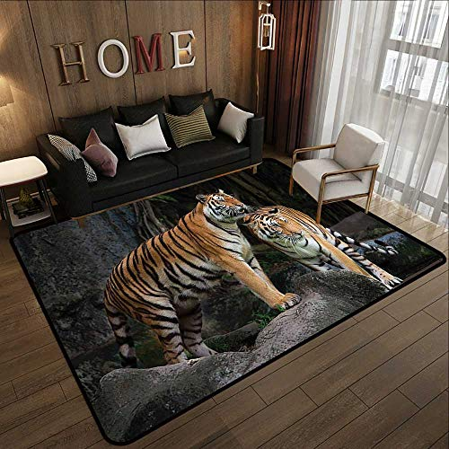 Printed Carpet,Animal Decor,Tiger Couple in The Jungle on Big Rocks Image Wild Cats in Nature Print,Grey and Ginger 71