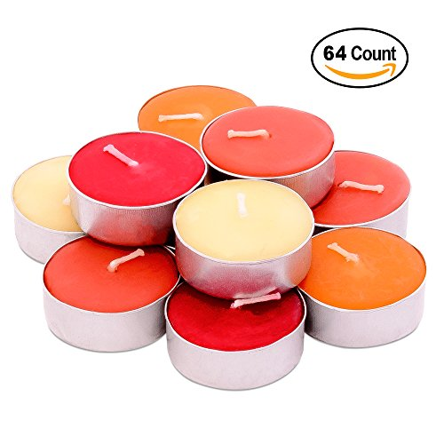 ed Tealights - 64 pcs - Set of 16 Highly Scented Luxury Tealight Candles with 4 Autumn Fragrances - Pumpkin Spice with Nutmeg, Orange Clove, Apple Cinnamon and French Vanilla (Luxury Votive)