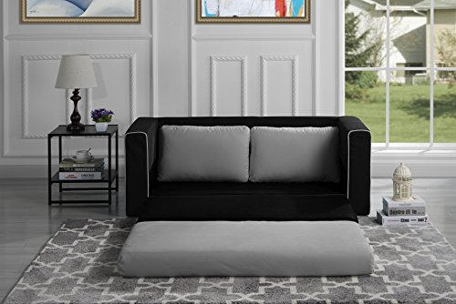 - Divano Roma Furniture Modern 2 Tone Modular/Convertible Sleeper (Black/Light Grey)